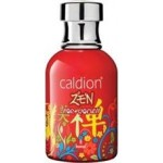 CALDION EDT BAYAN ZEN 100ML